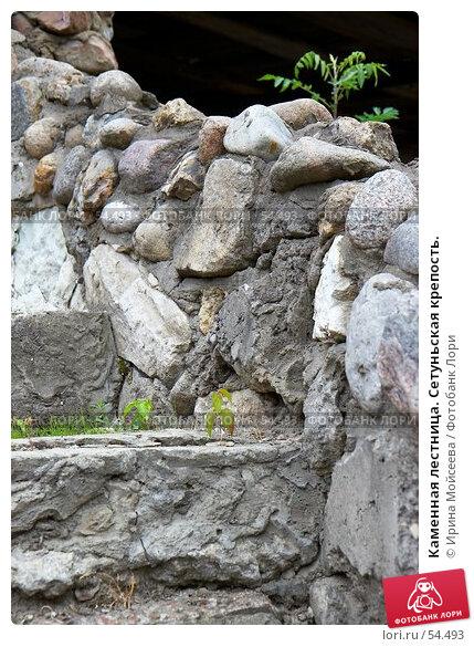 Каменная лестница. Сетуньская крепость., эксклюзивное фото № 54493, снято 10 июня 2007 г. (c) Ирина Мойсеева / Фотобанк Лори