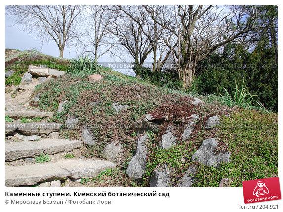 Купить «Каменные ступени. Киевский ботанический сад», фото № 204921, снято 12 апреля 2007 г. (c) Мирослава Безман / Фотобанк Лори