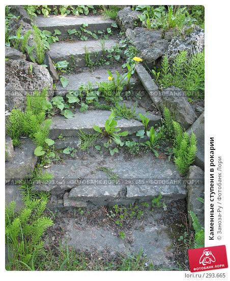 Каменные ступени в рокарии, фото № 293665, снято 17 мая 2008 г. (c) Заноза-Ру / Фотобанк Лори