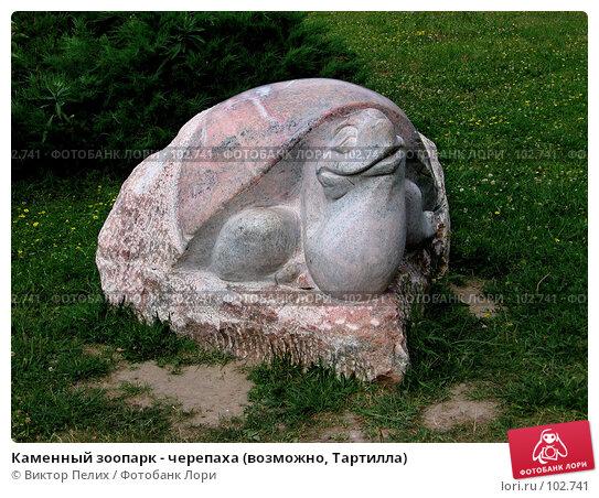 Каменный зоопарк - черепаха (возможно, Тартилла), фото № 102741, снято 25 октября 2016 г. (c) Виктор Пелих / Фотобанк Лори