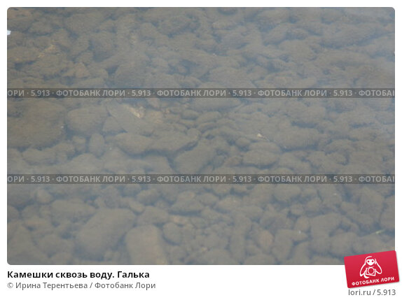 Камешки сквозь воду. Галька, эксклюзивное фото № 5913, снято 22 сентября 2005 г. (c) Ирина Терентьева / Фотобанк Лори