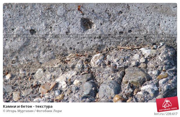 Купить «Камни и бетон - текстура», фото № 239617, снято 30 марта 2008 г. (c) Игорь Муртазин / Фотобанк Лори