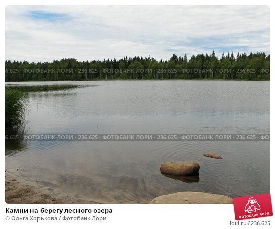 Камни на берегу лесного озера, фото № 236625, снято 11 июня 2007 г. (c) Ольга Хорькова / Фотобанк Лори