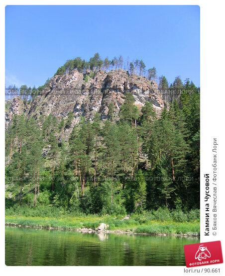 Камни на Чусовой, фото № 90661, снято 18 июля 2006 г. (c) Бяков Вячеслав / Фотобанк Лори