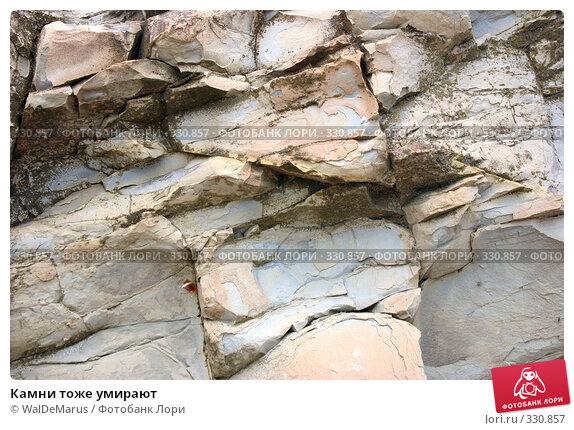 Камни тоже умирают, фото № 330857, снято 12 июня 2008 г. (c) WalDeMarus / Фотобанк Лори