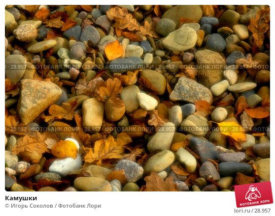 Купить «Камушки», фото № 28957, снято 2 октября 2005 г. (c) Игорь Соколов / Фотобанк Лори