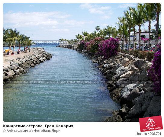 Канарские острова, Гран-Канария, фото № 206701, снято 27 марта 2007 г. (c) Алёна Фомина / Фотобанк Лори