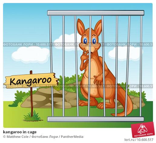 kangaroo in cage. Стоковая иллюстрация, иллюстратор Matthew Cole / PantherMedia / Фотобанк Лори