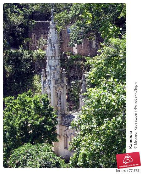 Капелла, эксклюзивное фото № 77873, снято 29 июля 2007 г. (c) Михаил Карташов / Фотобанк Лори