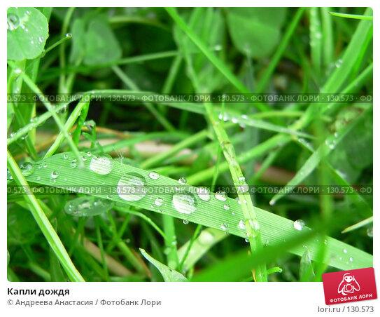 Капли дождя, фото № 130573, снято 27 мая 2006 г. (c) Андреева Анастасия / Фотобанк Лори