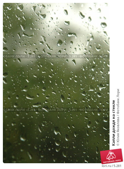 Капли дождя на стекле, фото № 5281, снято 10 июля 2006 г. (c) Юлия Яковлева / Фотобанк Лори