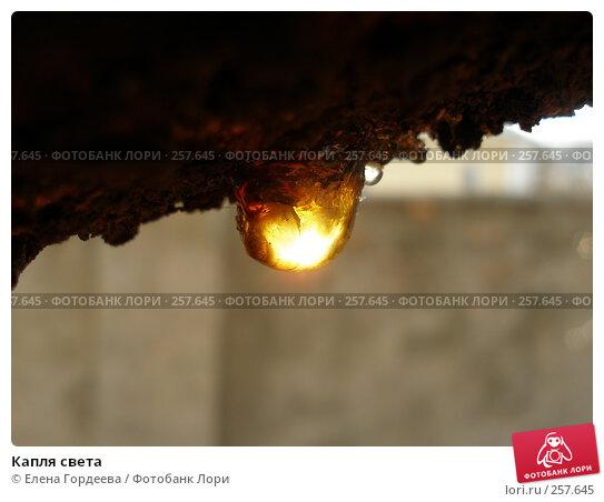 Капля света, фото № 257645, снято 27 марта 2008 г. (c) Елена Гордеева / Фотобанк Лори