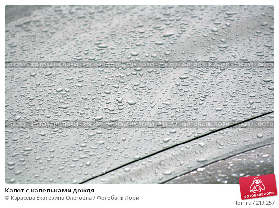 Капот с капельками дождя, фото № 219257, снято 23 февраля 2008 г. (c) Карасева Екатерина Олеговна / Фотобанк Лори