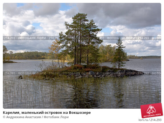Карелия, маленький островок на Вокшозере, фото № 214293, снято 16 сентября 2007 г. (c) Андрюхина Анастасия / Фотобанк Лори