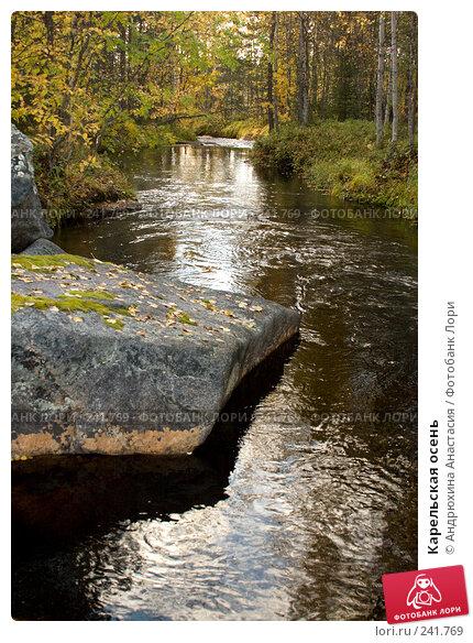Купить «Карельская осень», фото № 241769, снято 23 сентября 2007 г. (c) Андрюхина Анастасия / Фотобанк Лори