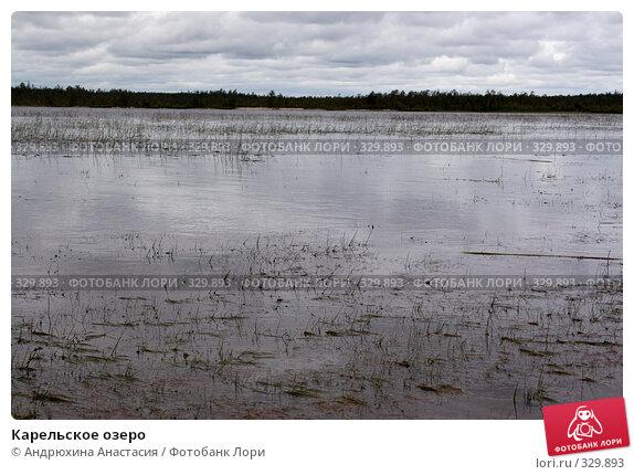 Карельское озеро, фото № 329893, снято 28 августа 2007 г. (c) Андрюхина Анастасия / Фотобанк Лори