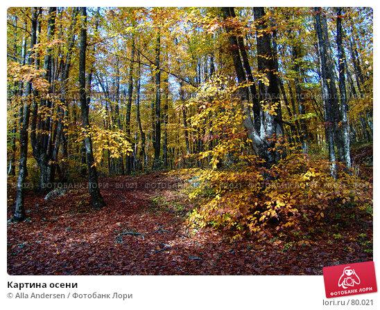 Картина осени, фото № 80021, снято 27 октября 2006 г. (c) Alla Andersen / Фотобанк Лори