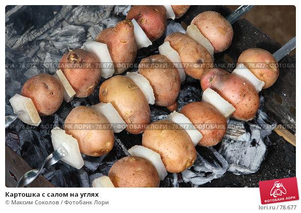 Картошка с салом на углях, фото № 78677, снято 28 июля 2007 г. (c) Максим Соколов / Фотобанк Лори