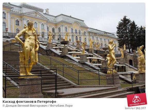Каскад фонтанов в Петергофе, фото № 262317, снято 16 апреля 2008 г. (c) Донцов Евгений Викторович / Фотобанк Лори
