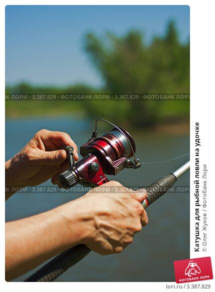 Купить «Катушка для рыбной ловли на удочке», фото № 3387829, снято 2 июня 2011 г. (c) Олег Жуков / Фотобанк Лори