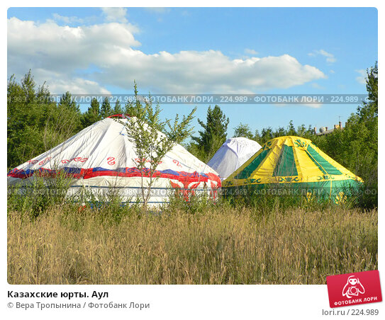Казахские юрты. Аул, фото № 224989, снято 26 июня 2017 г. (c) Вера Тропынина / Фотобанк Лори