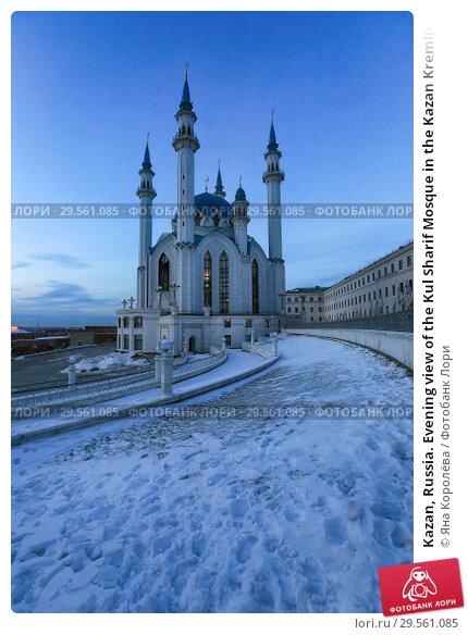 Купить «Kazan, Russia. Evening view of the Kul Sharif Mosque in the Kazan Kremlin», фото № 29561085, снято 6 декабря 2018 г. (c) Яна Королёва / Фотобанк Лори