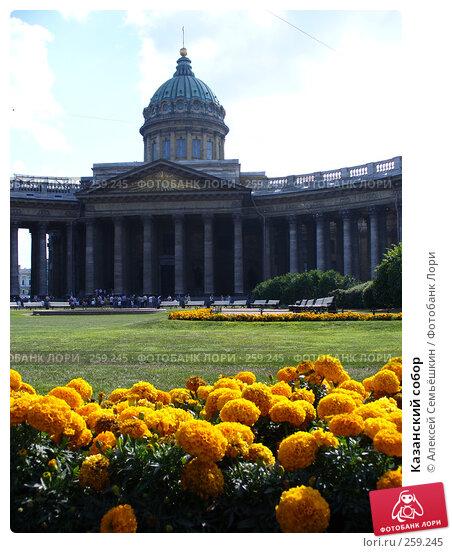 Казанский собор, фото № 259245, снято 12 августа 2006 г. (c) Алексей Семьёшкин / Фотобанк Лори