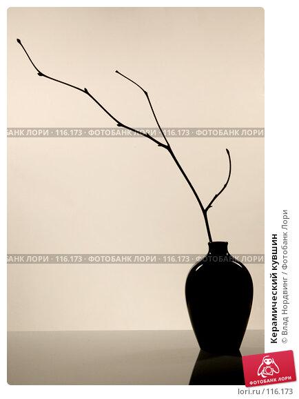 Керамический кувшин, фото № 116173, снято 13 ноября 2007 г. (c) Влад Нордвинг / Фотобанк Лори