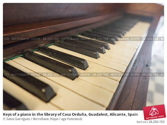 Купить «Keys of a piano in the library of Casa Orduña, Guadalest, Alicante, Spain», фото № 28250153, снято 30 января 2018 г. (c) age Fotostock / Фотобанк Лори