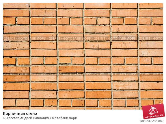 Кирпичная стена, фото № 238889, снято 30 марта 2008 г. (c) Арестов Андрей Павлович / Фотобанк Лори