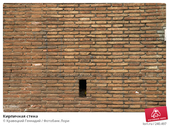 Кирпичная стена, фото № 240497, снято 24 февраля 2017 г. (c) Кравецкий Геннадий / Фотобанк Лори