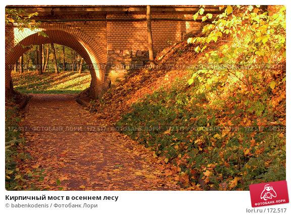 Купить «Кирпичный мост в осеннем лесу», фото № 172517, снято 30 сентября 2005 г. (c) Бабенко Денис Юрьевич / Фотобанк Лори