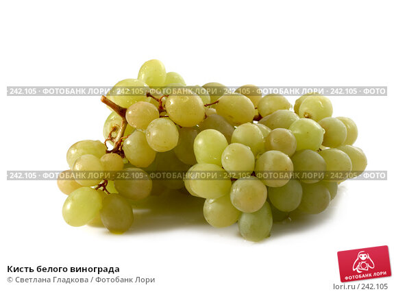 Кисть белого винограда, фото № 242105, снято 24 марта 2017 г. (c) Cветлана Гладкова / Фотобанк Лори