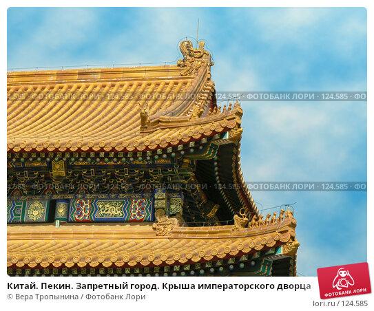 Китай. Пекин. Запретный город. Крыша императорского дворца, фото № 124585, снято 28 октября 2016 г. (c) Вера Тропынина / Фотобанк Лори