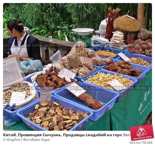Купить «Китай. Провинция Сычуань. Продавцы снадобий на горе Эмей.», фото № 70393, снято 14 апреля 2004 г. (c) GrayFox / Фотобанк Лори