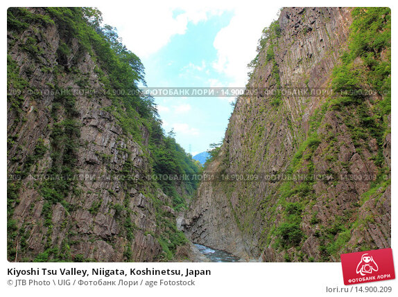 Купить «Kiyoshi Tsu Valley, Niigata, Koshinetsu, Japan», фото № 14900209, снято 19 июня 2018 г. (c) age Fotostock / Фотобанк Лори
