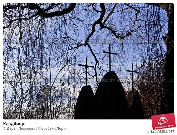 Купить «Кладбище», фото № 6586037, снято 26 октября 2014 г. (c) Дарья Филин / Фотобанк Лори