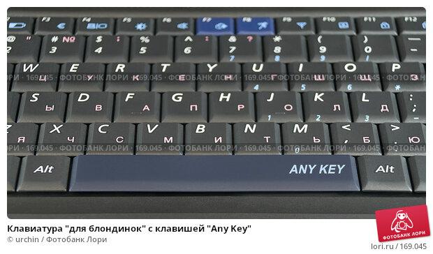 "Купить «Клавиатура ""для блондинок"" с клавишей ""Any Key""», фото № 169045, снято 7 января 2008 г. (c) urchin / Фотобанк Лори"