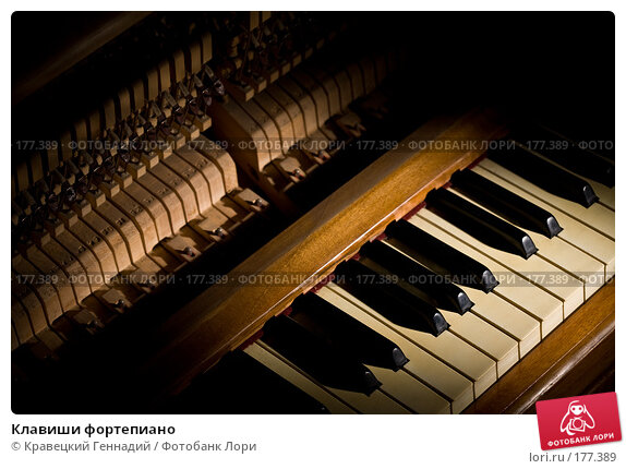 Клавиши фортепиано, фото № 177389, снято 3 октября 2006 г. (c) Кравецкий Геннадий / Фотобанк Лори
