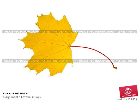 Купить «Кленовый лист», фото № 105433, снято 27 октября 2007 г. (c) Argument / Фотобанк Лори