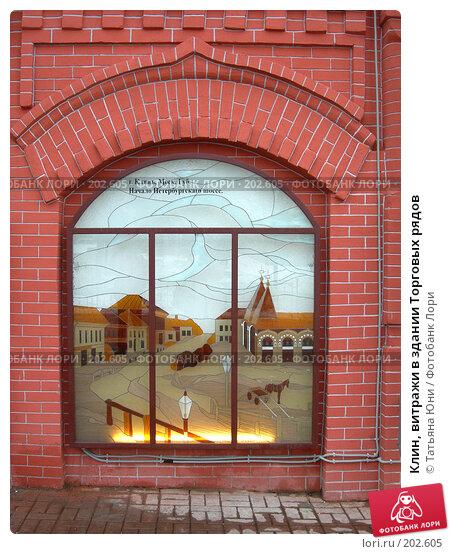 Клин, витражи в здании Торговых рядов, эксклюзивное фото № 202605, снято 9 февраля 2008 г. (c) Татьяна Юни / Фотобанк Лори