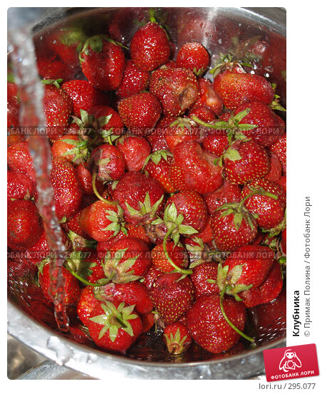 Купить «Клубника», фото № 295077, снято 18 июня 2007 г. (c) Примак Полина / Фотобанк Лори