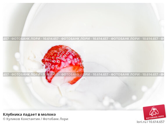 Клубника падает в молоко. Стоковое фото, фотограф Куликов Константин / Фотобанк Лори