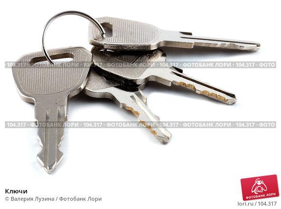 Купить «Ключи», фото № 104317, снято 18 декабря 2017 г. (c) Валерия Потапова / Фотобанк Лори