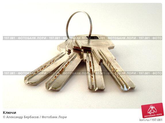 Ключи, фото № 197081, снято 3 февраля 2008 г. (c) Александр Бербасов / Фотобанк Лори