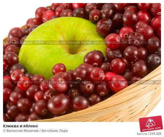 Купить «Клюква и яблоко», фото № 219325, снято 14 октября 2007 г. (c) Валентин Мосичев / Фотобанк Лори