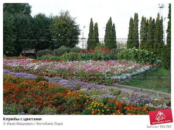 Купить «Клумбы с цветами», фото № 153797, снято 4 сентября 2007 г. (c) Иван Мацкевич / Фотобанк Лори
