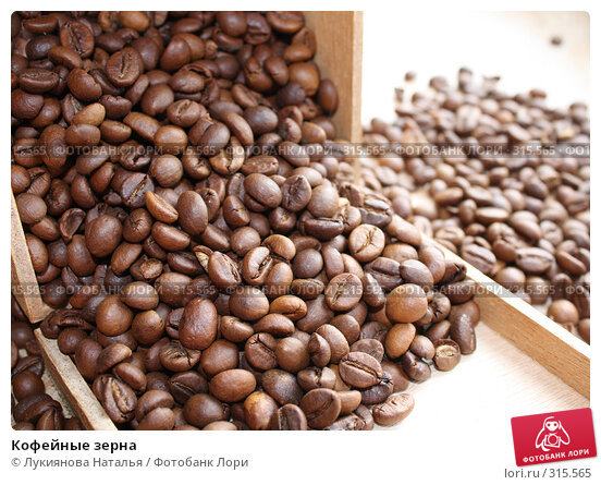 Кофейные зерна, фото № 315565, снято 5 июня 2008 г. (c) Лукиянова Наталья / Фотобанк Лори