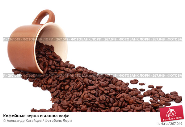 Купить «Кофейные зерна и чашка кофе», фото № 267049, снято 29 апреля 2008 г. (c) Александр Катайцев / Фотобанк Лори