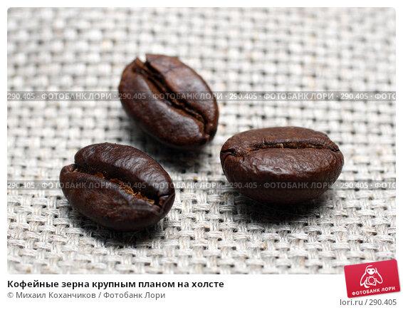 Купить «Кофейные зерна крупным планом на холсте», фото № 290405, снято 15 мая 2008 г. (c) Михаил Коханчиков / Фотобанк Лори